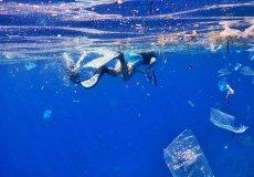 В Аланье прошла уборка морского дна
