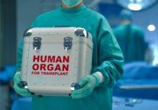 Турция – одна из лучших стран в области трансплантологии