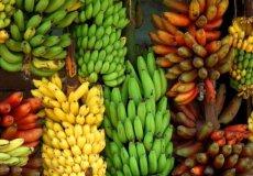Необычные красные бананы