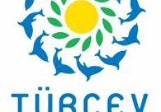 454 турецких пляжа отмечены Голубым флагом