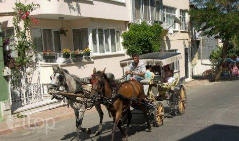 Электромобили вместо конных повозок