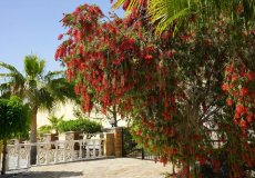Продажа виллы 3+1, 180 м2, до моря 3500 м в районе Каргыджак, Аланья, Турция № 3679 – фото 11
